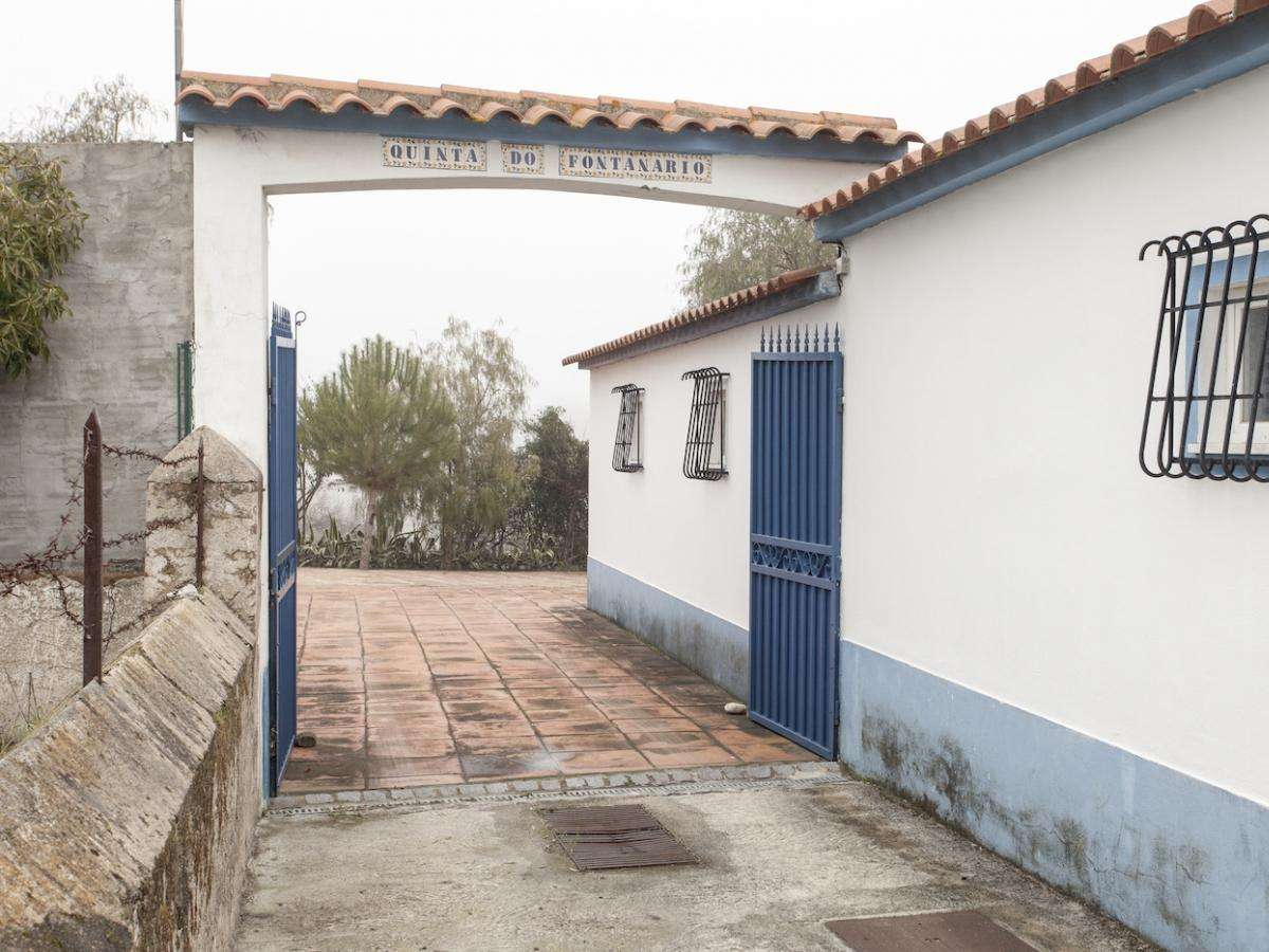 Quintas e herdades para comprar, Benavila e Valongo, Portalegre - Foto 30