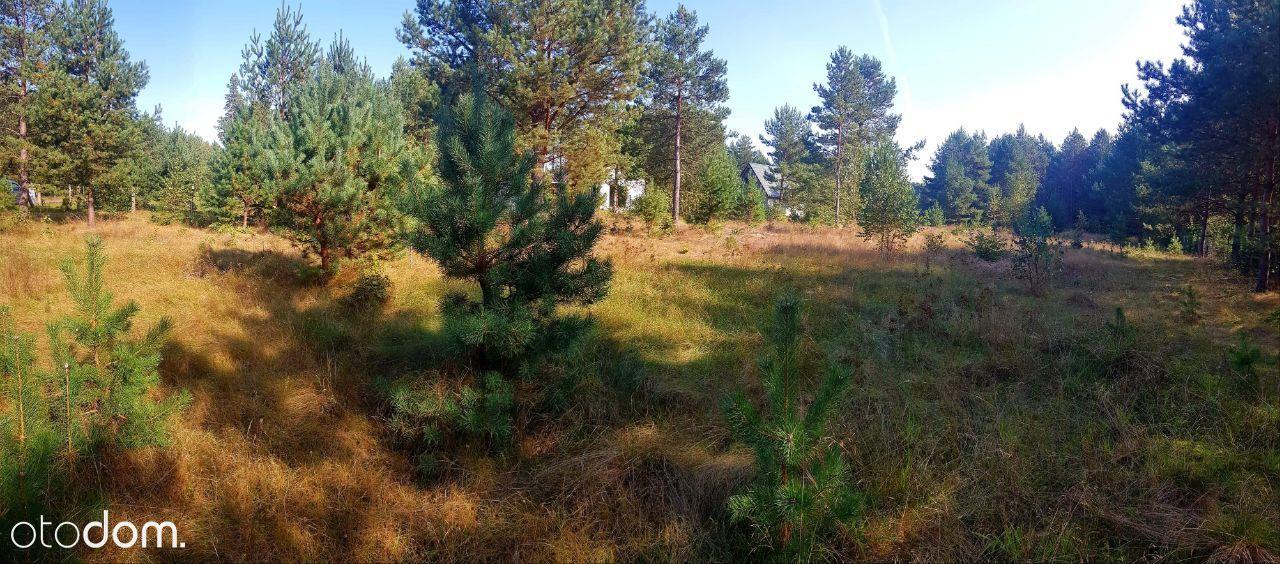 Piekna dzialka z lasem w Pile gm. Gostycyn