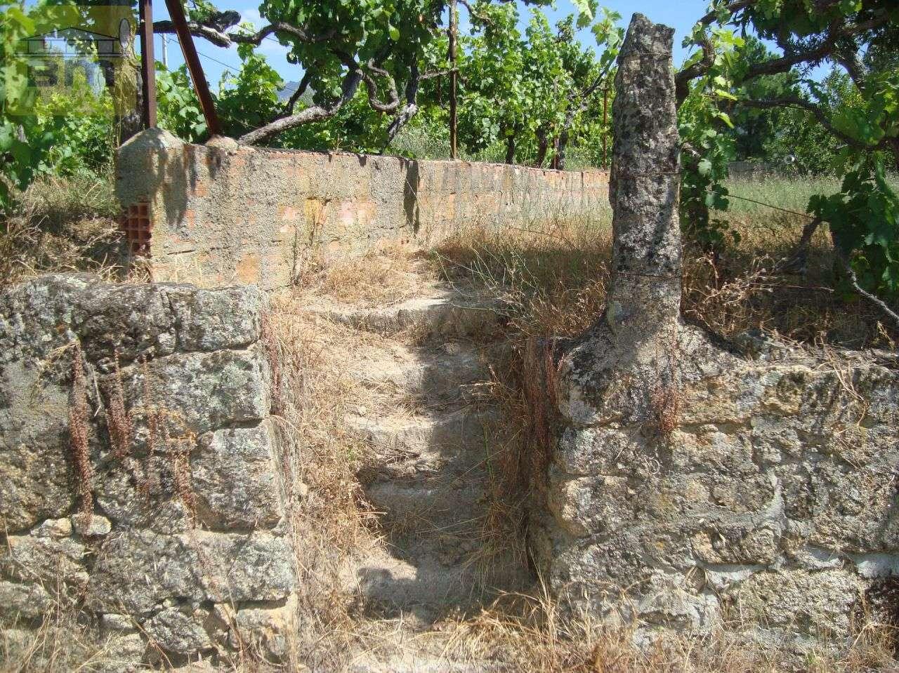 Quintas e herdades para comprar, Almaceda, Castelo Branco - Foto 39