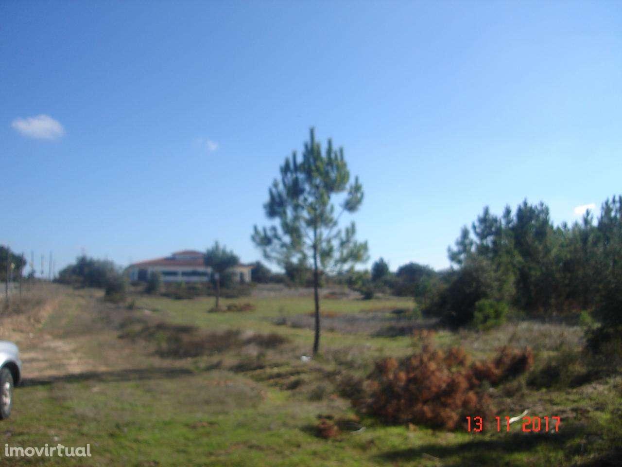 Terreno para comprar, Quinta do Anjo, Setúbal - Foto 7