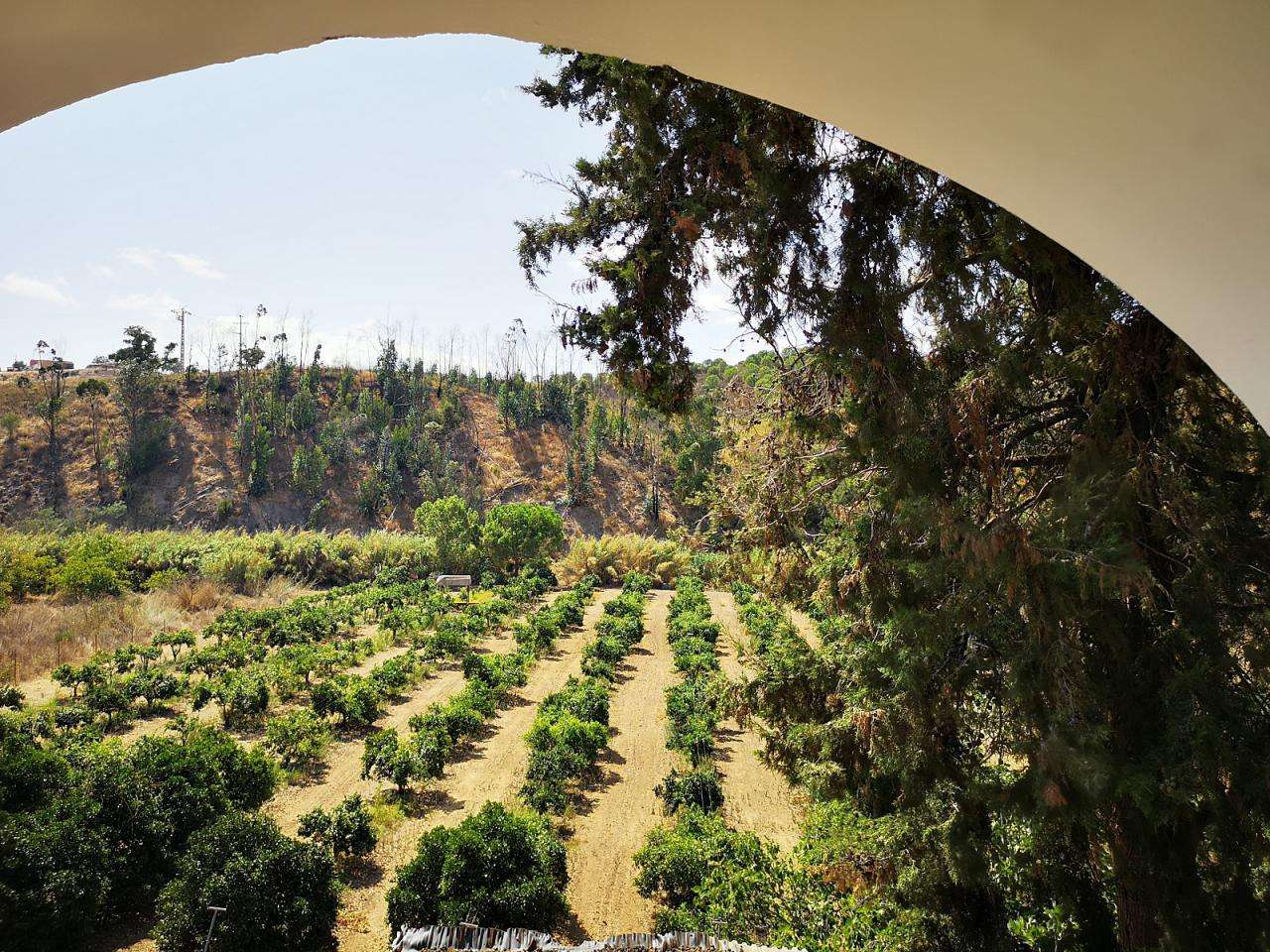 Quintas e herdades para comprar, Portimão - Foto 1