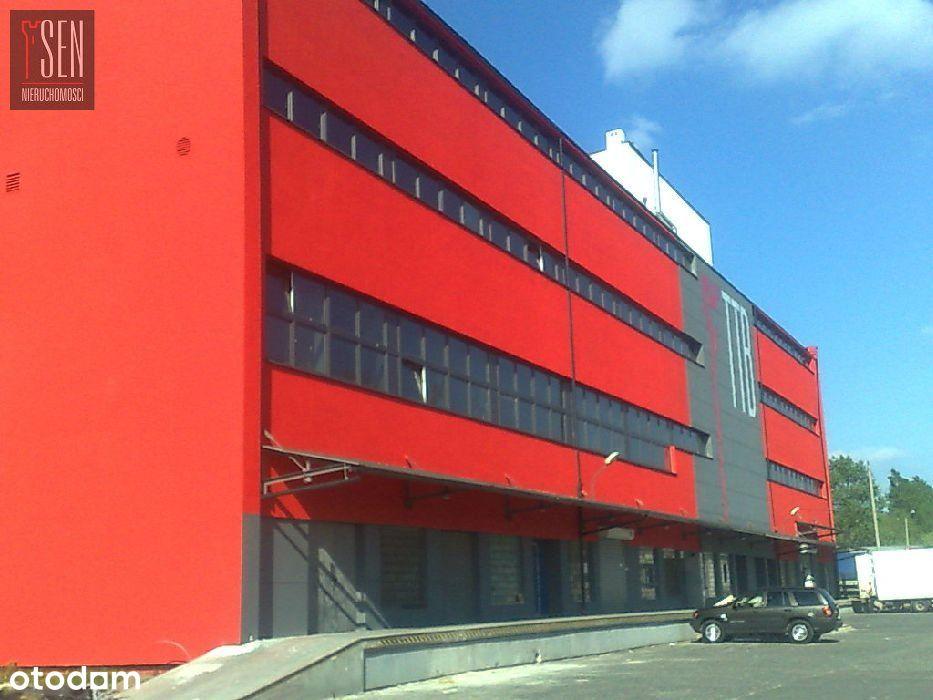 Hala/Magazyn, 288 m², Tychy