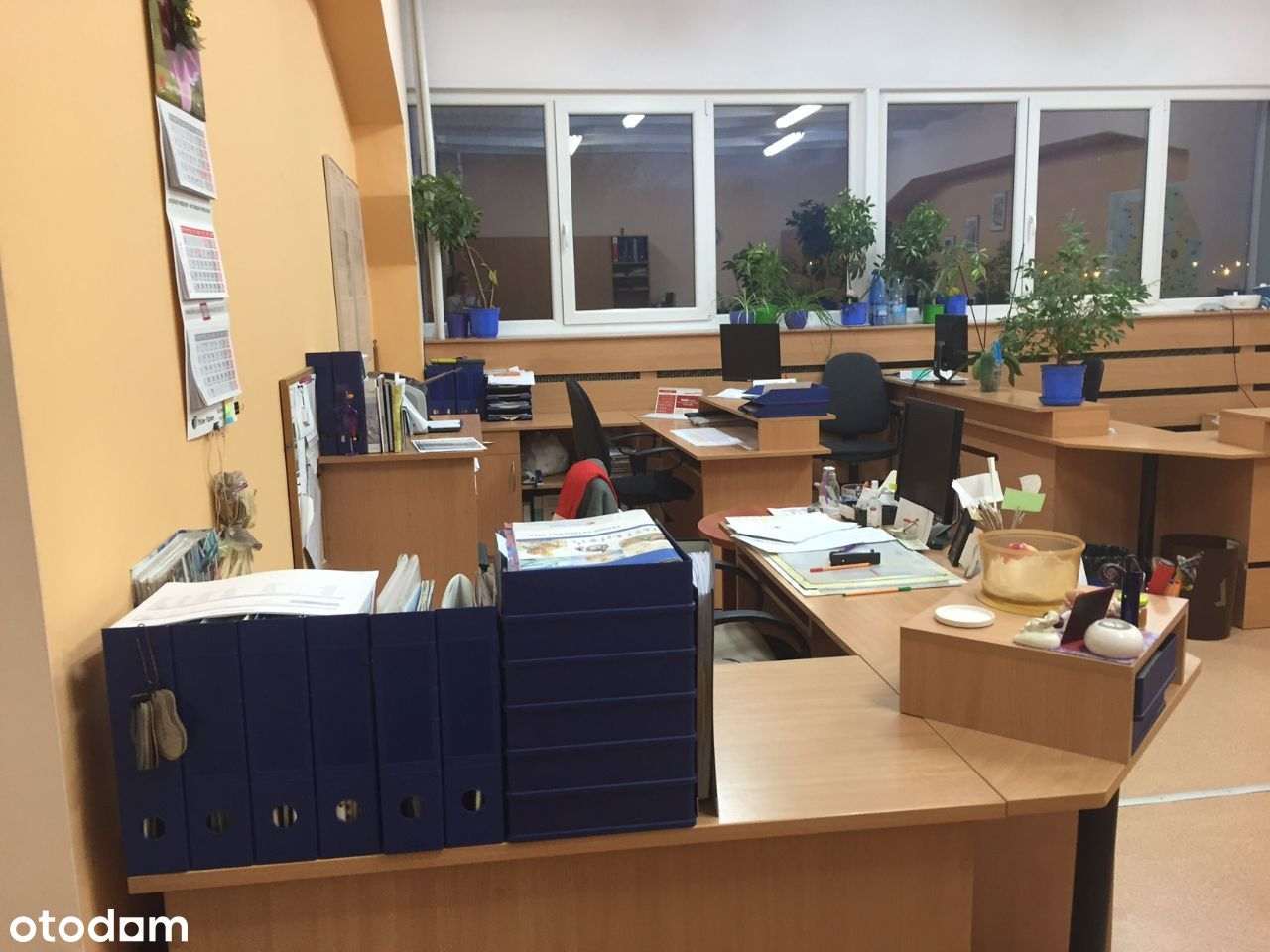 Lokal do wynajęcia biuro usługi gabinet Ogrody 49m