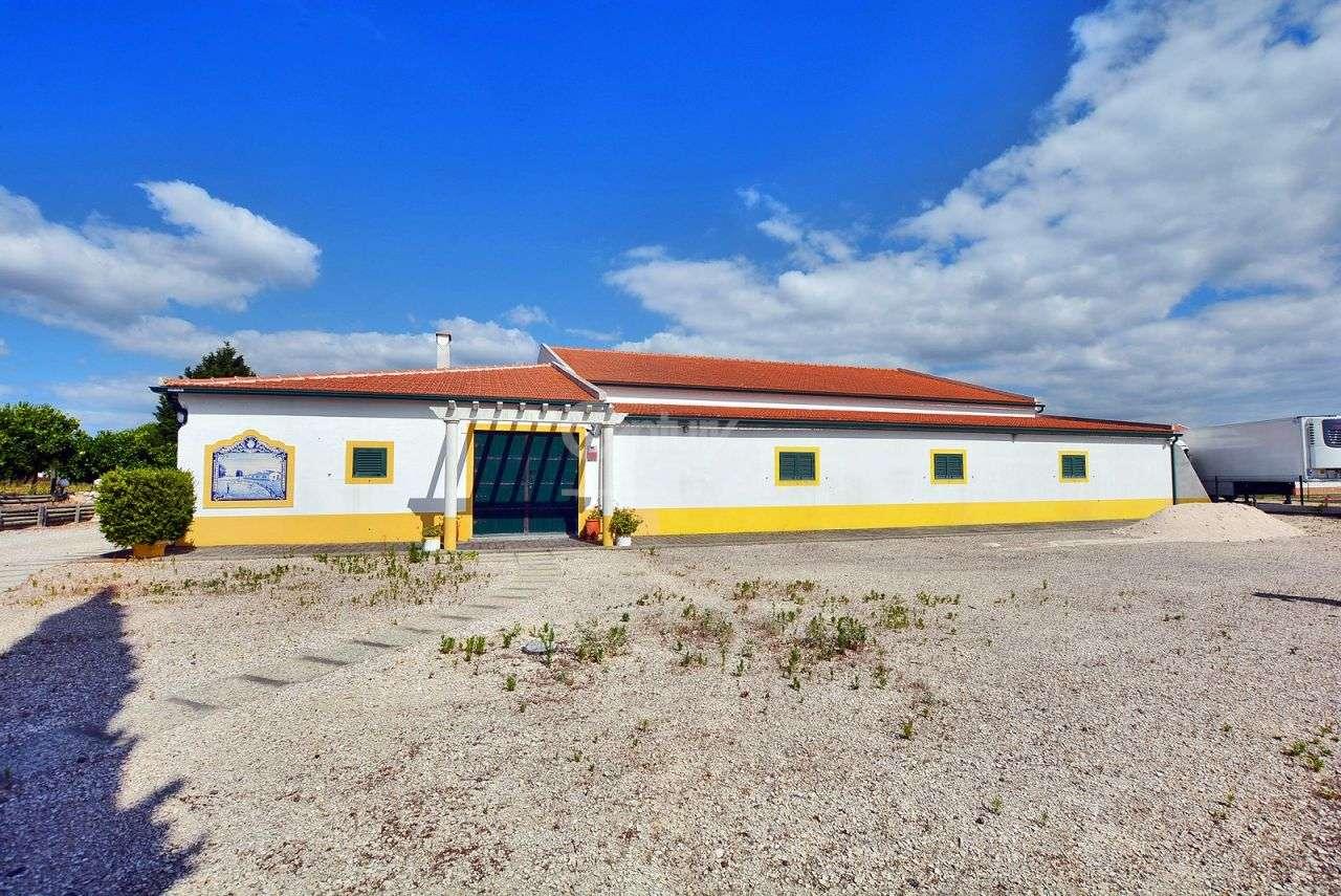 Quintas e herdades para comprar, Branca, Coruche, Santarém - Foto 3