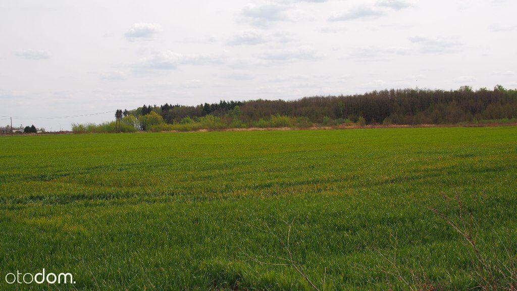 Grunty rolne w Dłużniewie gm Baboszewo