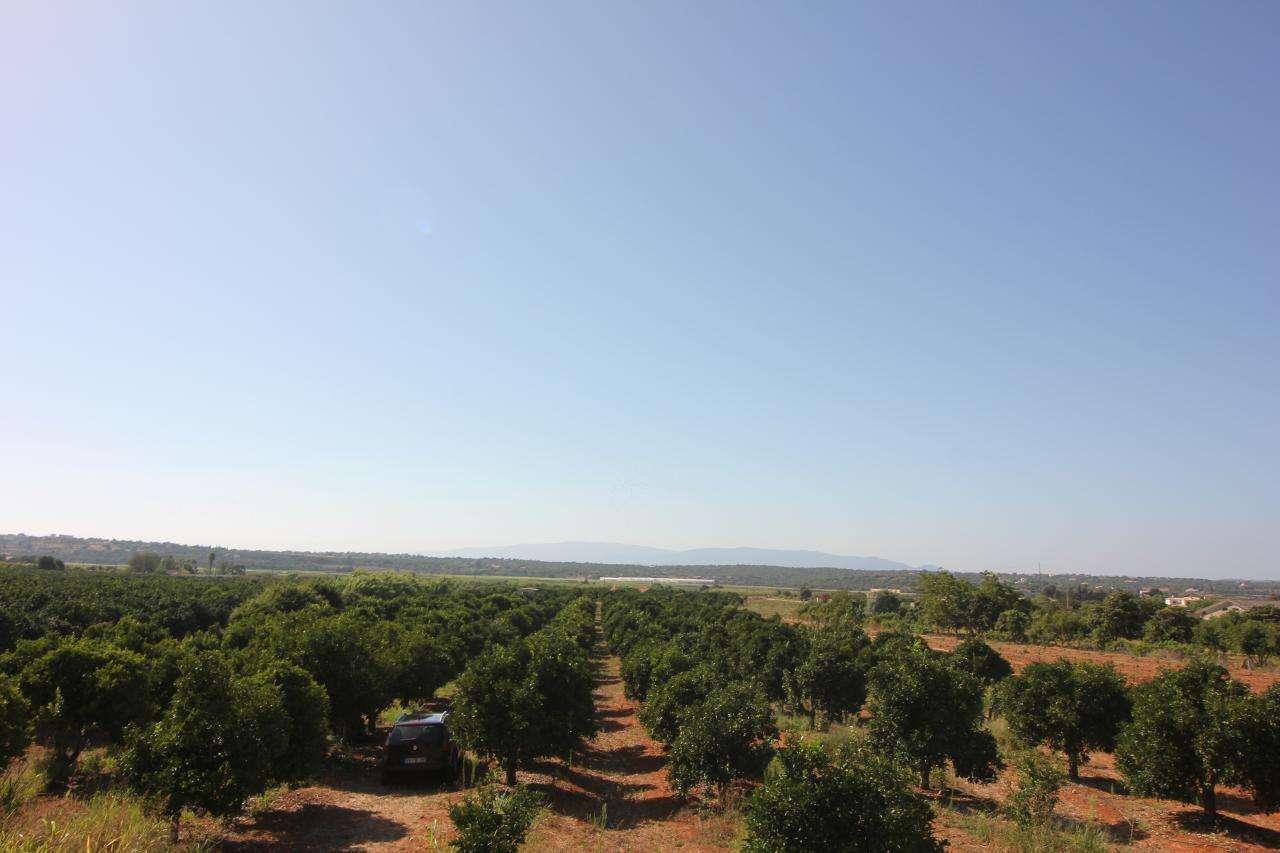 Quintas e herdades para comprar, Porches, Faro - Foto 13