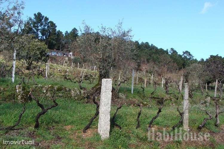 Quintas e herdades para comprar, Povolide, Viseu - Foto 9