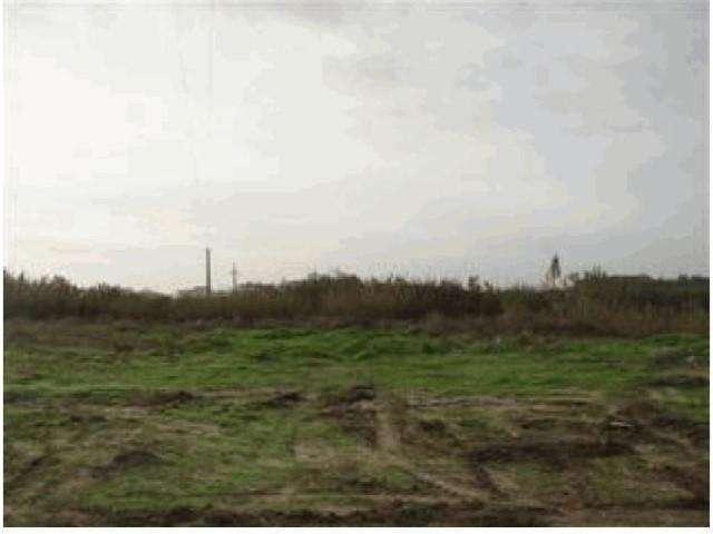 Terreno para comprar, Caldas da Rainha - Santo Onofre e Serra do Bouro, Caldas da Rainha, Leiria - Foto 5