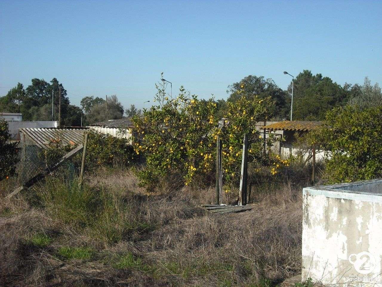 Terreno para comprar, Palmela - Foto 4
