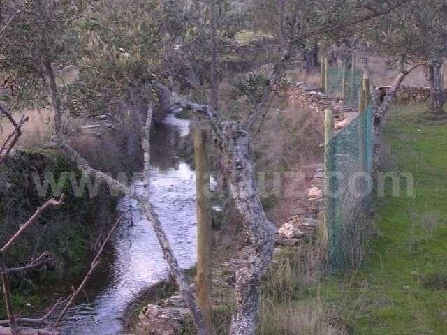 Terreno para comprar, Almaceda, Castelo Branco - Foto 3