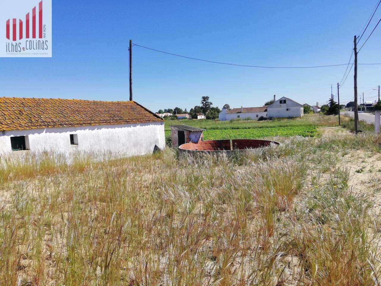 Quintas e herdades para comprar, Salvaterra de Magos e Foros de Salvaterra, Santarém - Foto 14