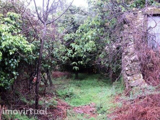 Quintas e herdades para comprar, Montaria, Viana do Castelo - Foto 2