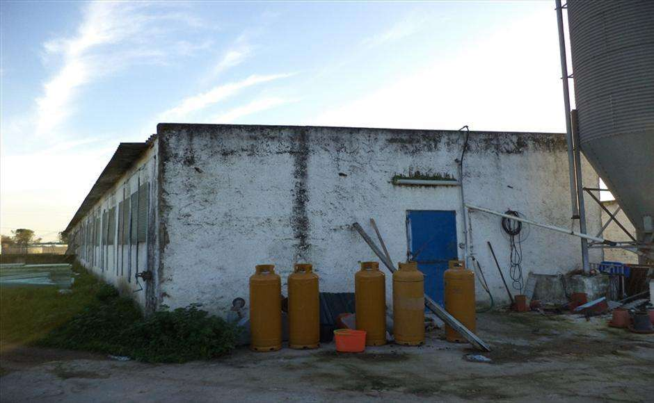 Quintas e herdades para comprar, Alcochete - Foto 10