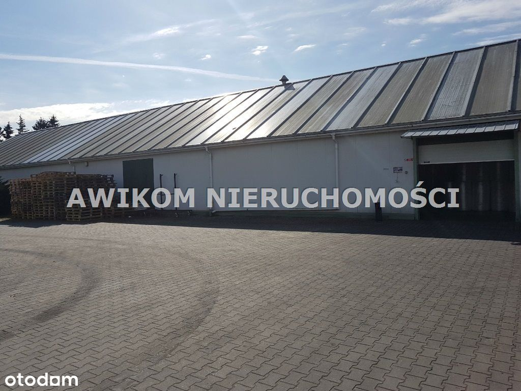 Hala/Magazyn, 2 080 m², Jawczyce