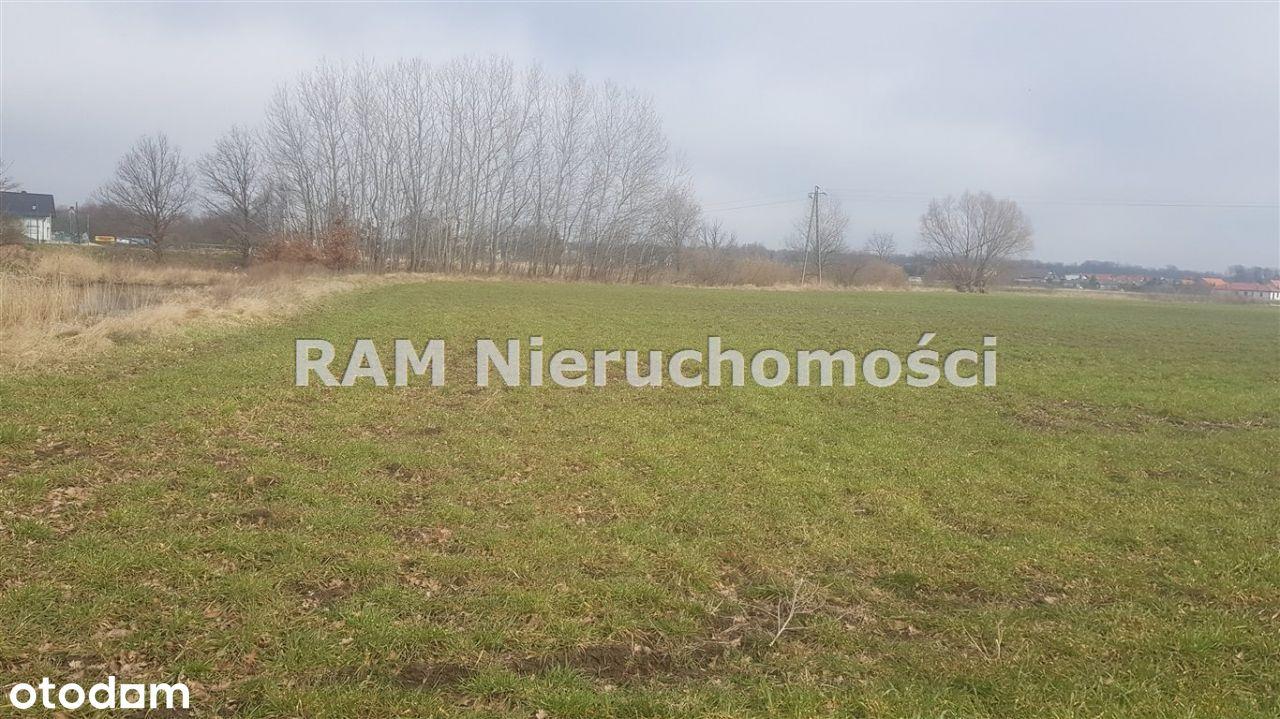 Działka, 1 000 m², Serby