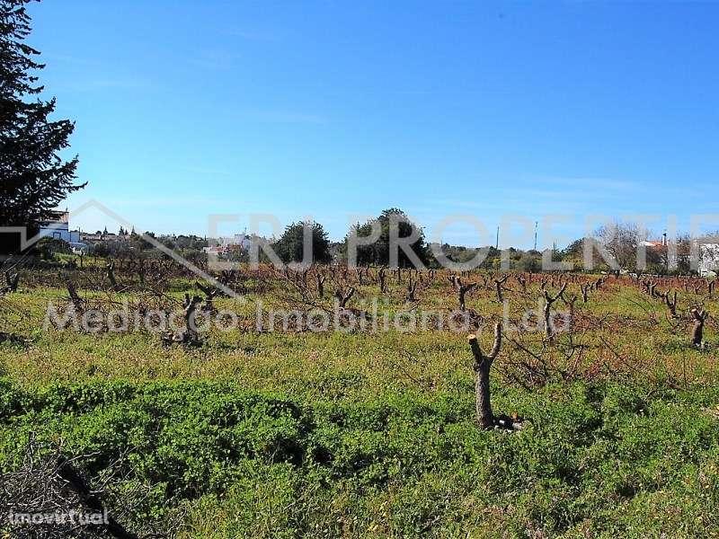 Terreno para comprar, Vila Nova de Cacela, Faro - Foto 15