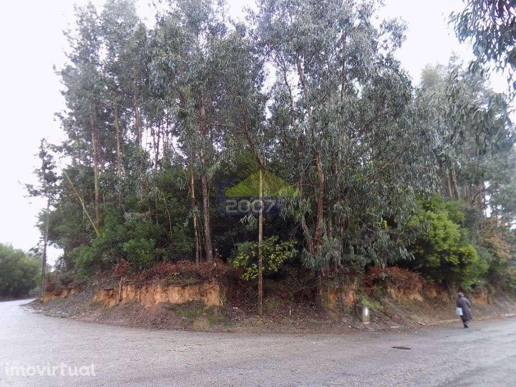 Terreno para comprar, Esmoriz, Ovar, Aveiro - Foto 10