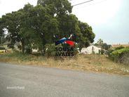 Terreno para comprar, Coz, Alpedriz e Montes, Alcobaça, Leiria - Foto 2