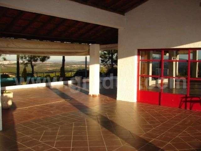 Loja para comprar, Almaceda, Castelo Branco - Foto 9