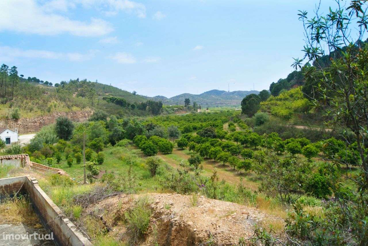 Terreno para comprar, Alferce, Monchique, Faro - Foto 2