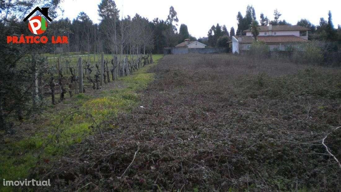 Terreno para comprar, Valongo do Vouga, Aveiro - Foto 4