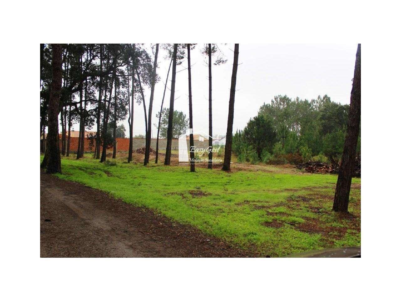 Terreno para comprar, Monte Redondo e Carreira, Leiria - Foto 4