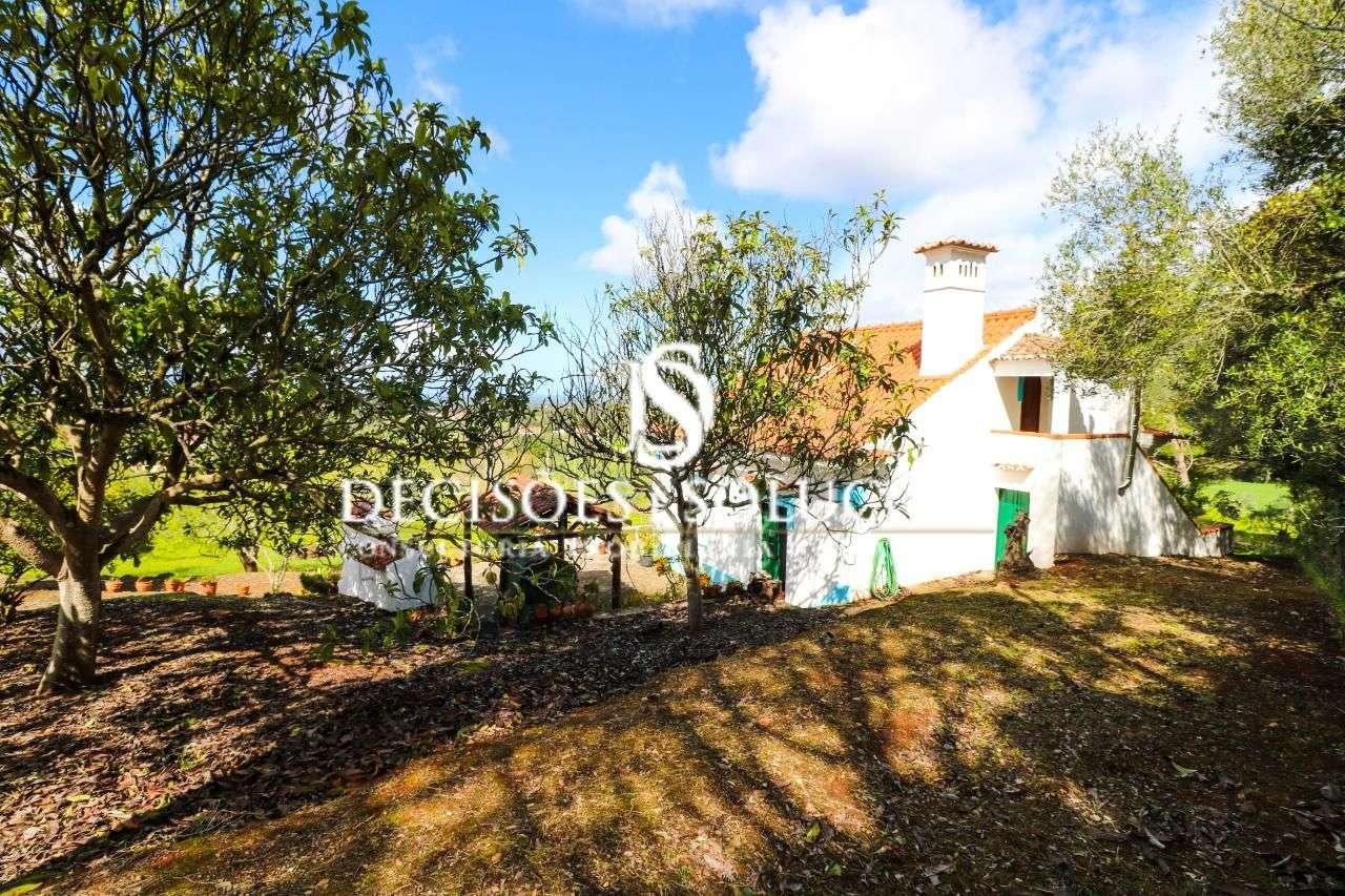 Quintas e herdades para comprar, Santiago do Cacém, Santa Cruz e São Bartolomeu da Serra, Santiago do Cacém, Setúbal - Foto 7