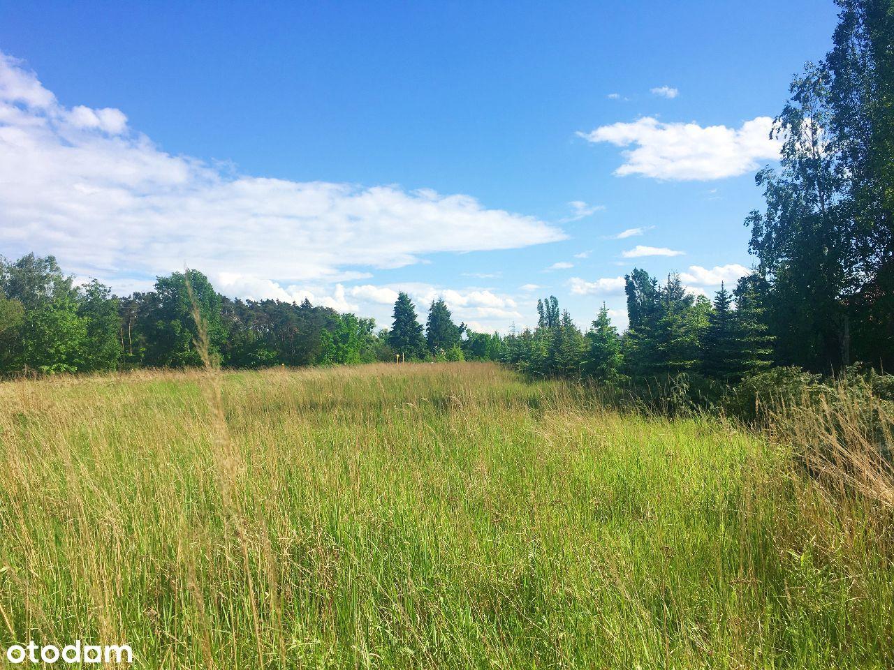 Działka - teren zielony