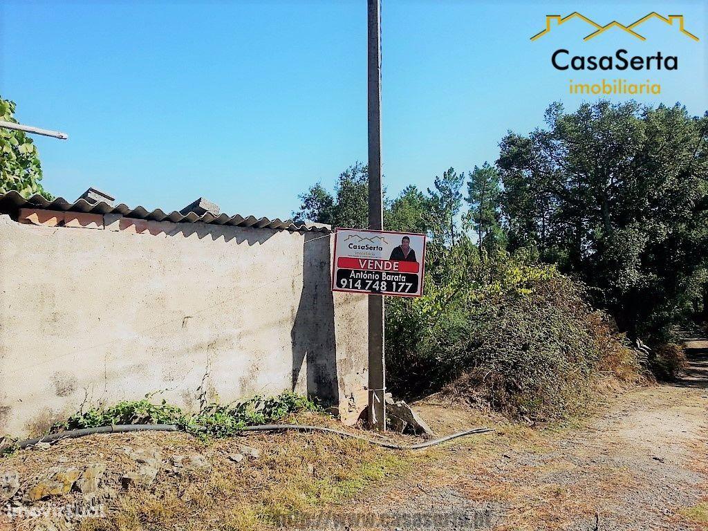 Terreno para comprar, Sertã, Castelo Branco - Foto 8