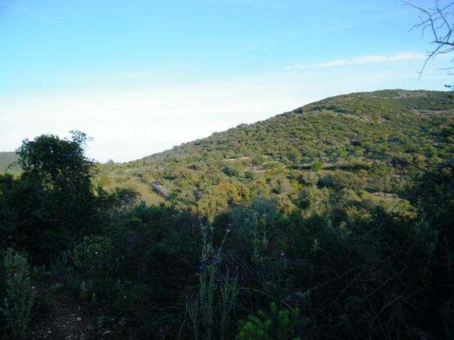 Terreno para comprar, Quelfes, Faro - Foto 8