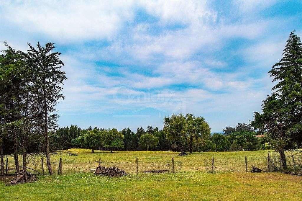 Quintas e herdades para comprar, Santiago do Cacém, Santa Cruz e São Bartolomeu da Serra, Setúbal - Foto 40