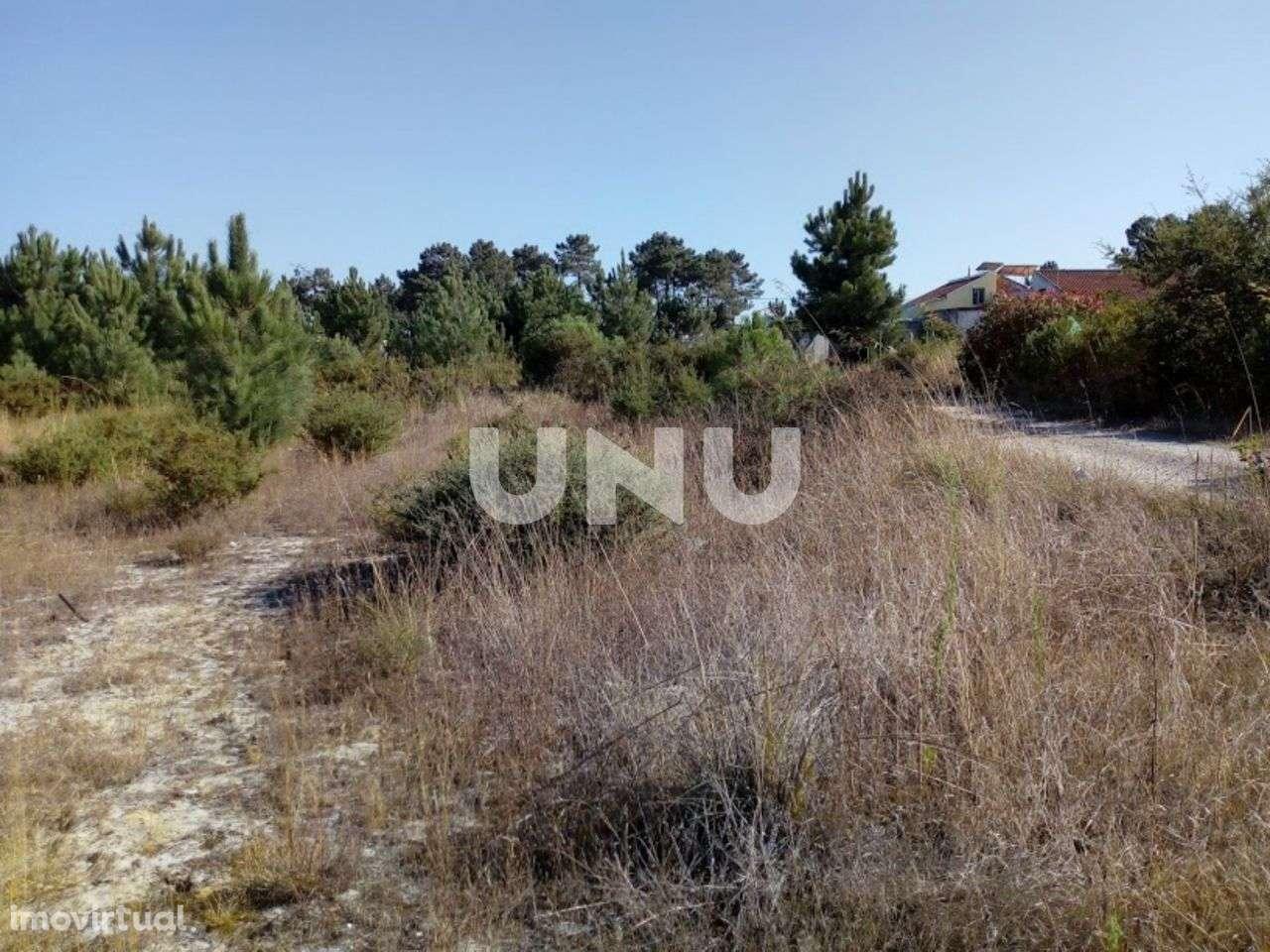 Terreno para comprar, Quinta do Anjo, Setúbal - Foto 6