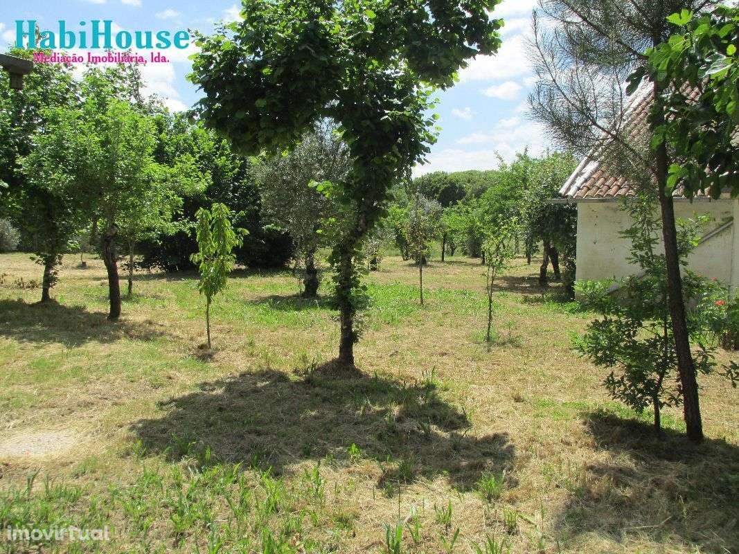 Quintas e herdades para comprar, Ranhados, Viseu - Foto 6