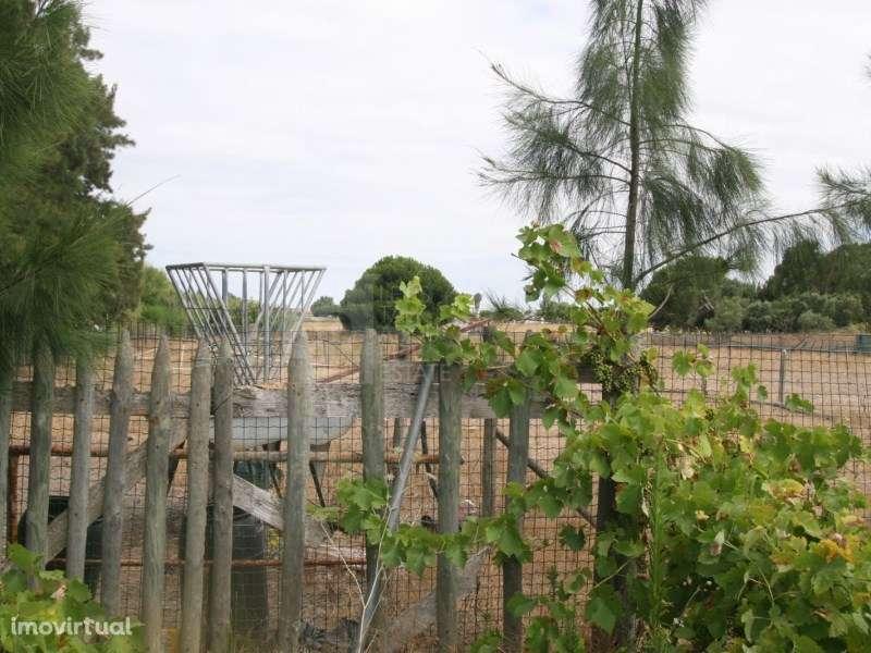 Terreno para comprar, Pinhal Novo, Setúbal - Foto 36