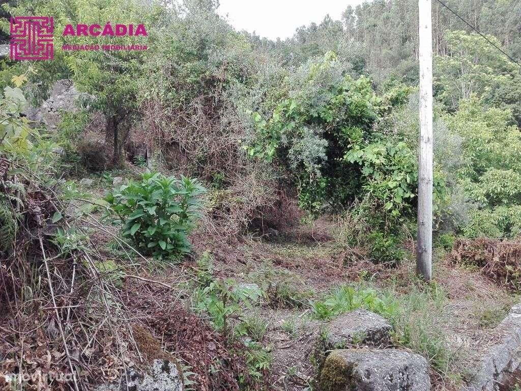 Quintas e herdades para comprar, Caires, Amares, Braga - Foto 2