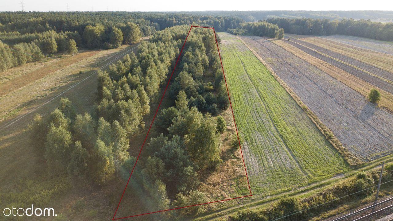 Działka leśna okolice Warszawy 65 km od Otwocka