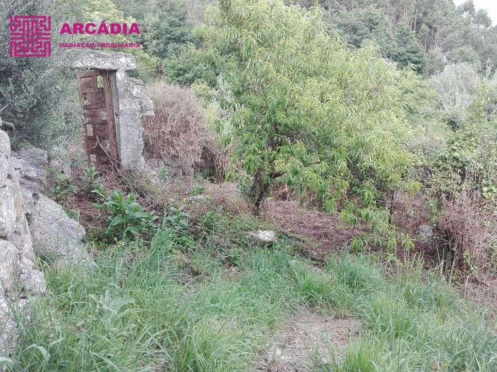 Quintas e herdades para comprar, Caires, Amares, Braga - Foto 5