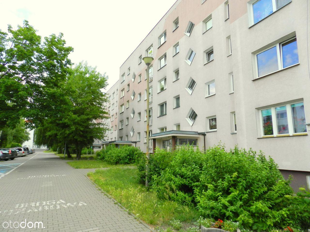 Mieszkanie, 63 m², Poznań