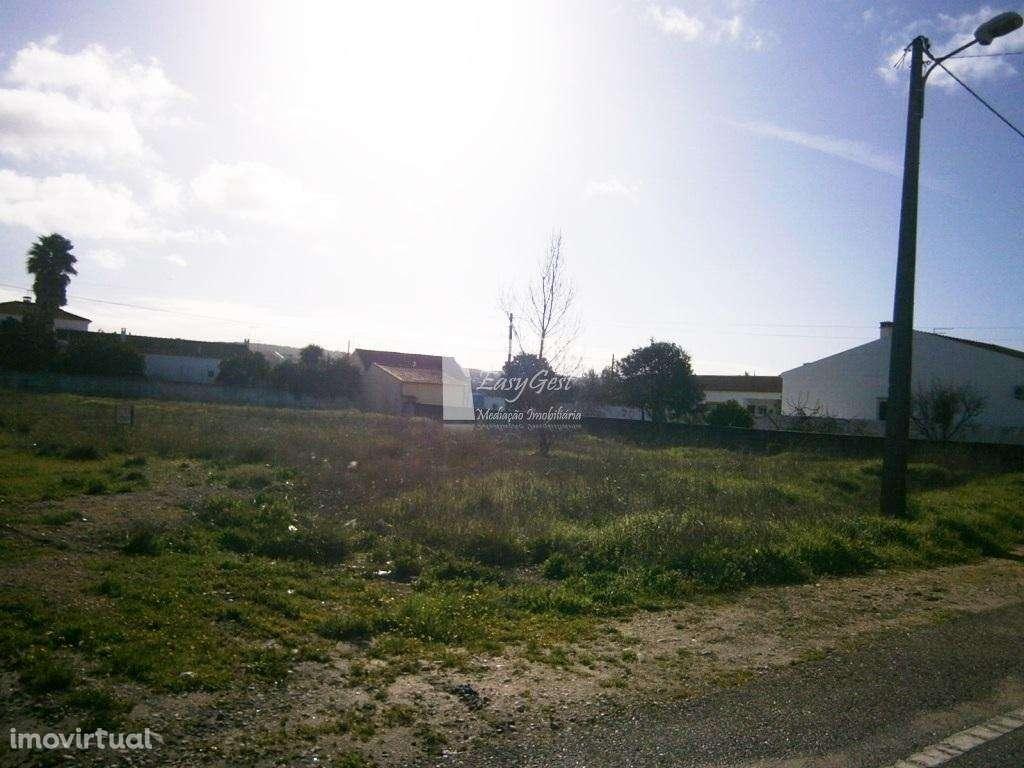 Terreno para comprar, Fazendas de Almeirim, Santarém - Foto 5