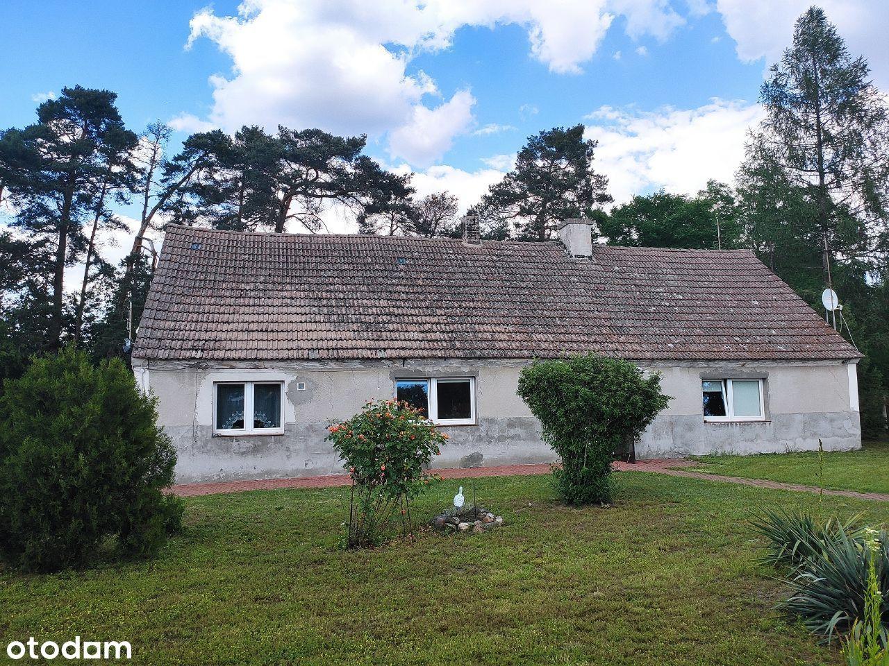 Dom w Różanówce przy lesie - sprzedam / zamienię !