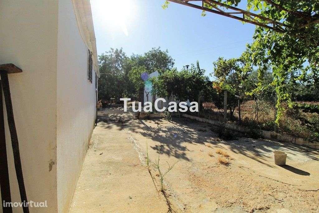 Quintas e herdades para comprar, Moncarapacho e Fuseta, Olhão, Faro - Foto 22
