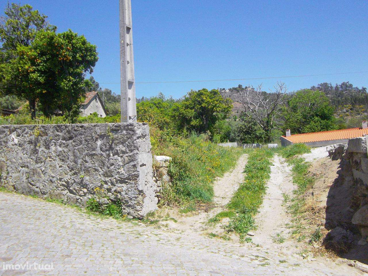Terreno para comprar, Cardielos e Serreleis, Viana do Castelo - Foto 5
