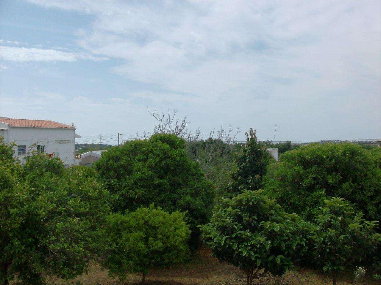 Terreno para comprar, Luz de Tavira e Santo Estêvão, Faro - Foto 9