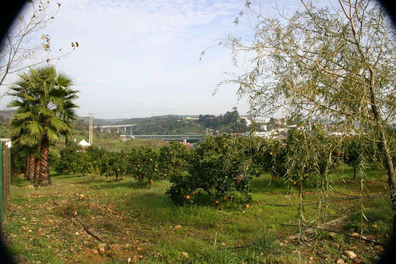 Quintas e herdades para comprar, Praia do Ribatejo, Santarém - Foto 35