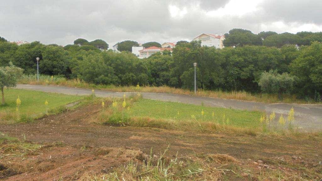 Terreno para comprar, Abrantes (São Vicente e São João) e Alferrarede, Santarém - Foto 1