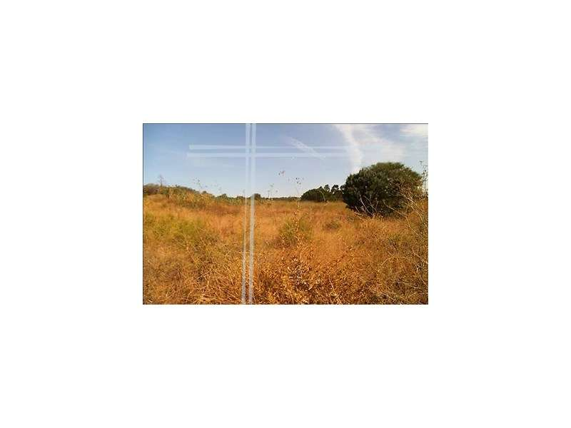 Terreno para comprar, Charneca de Caparica e Sobreda, Setúbal - Foto 5