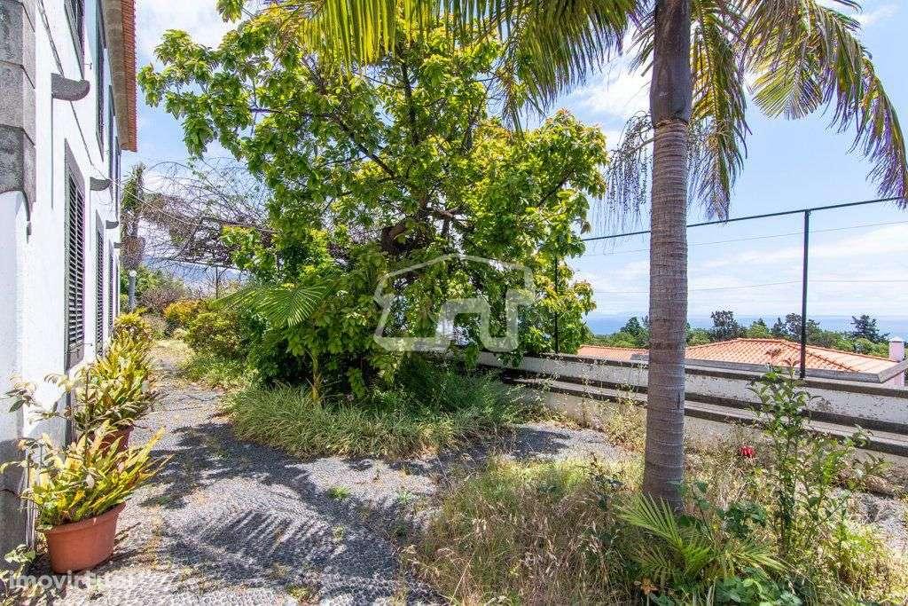 Quintas e herdades para comprar, São Martinho, Ilha da Madeira - Foto 2
