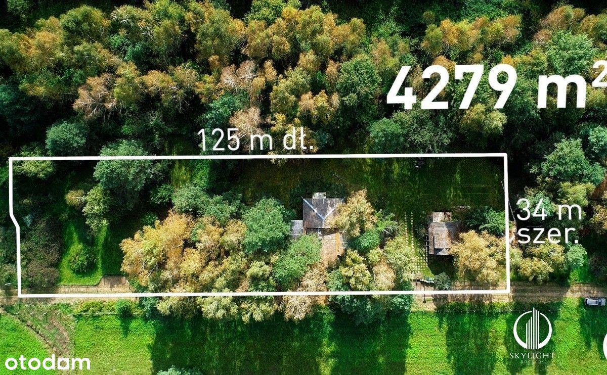 Działka (4279 mkw) pod zabud. mieszkalną; Las