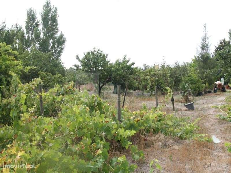 Terreno para comprar, Pinhal Novo, Setúbal - Foto 40