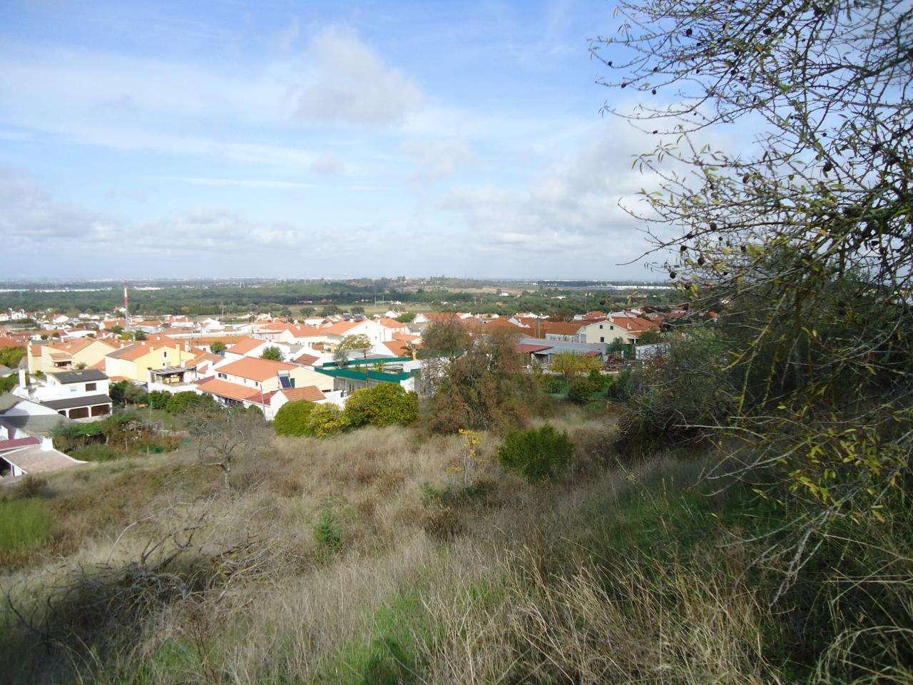 Terreno para comprar, Quinta do Anjo, Setúbal - Foto 3